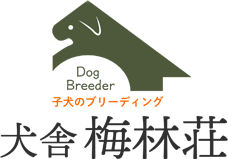 犬舎 梅林荘|岡山県の高見ブリーダー