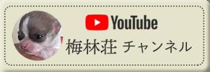 梅林荘youtubeチャンネル